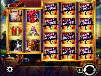 Spiele Crazy Goose - Video Slots Online