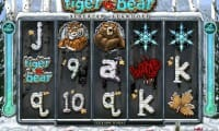 Tiger vs Bear thumbnail