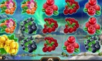 Winterberries thumbnail